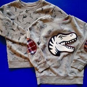 Dinosaur Sweatshirts